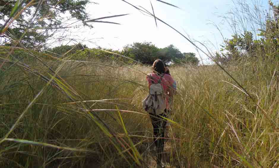 Ecotourism material and Backpack
