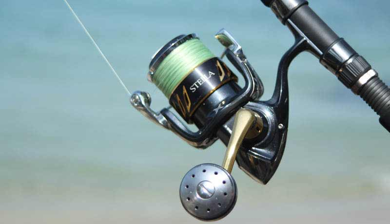 reel shimano stella 5000 for cast bissau