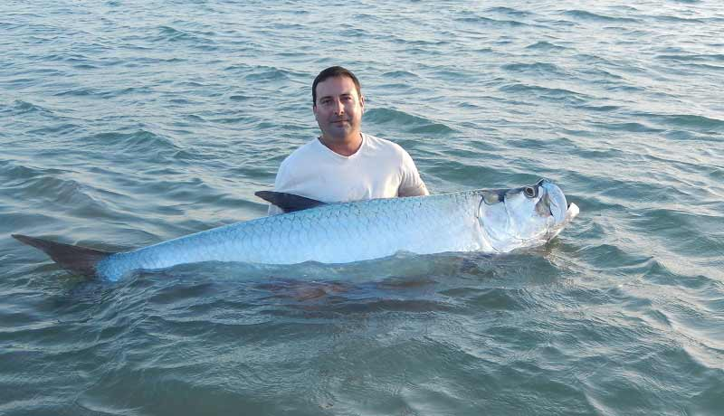 amazing 60kg tarpon caught on wedge at the bijagos archipelago